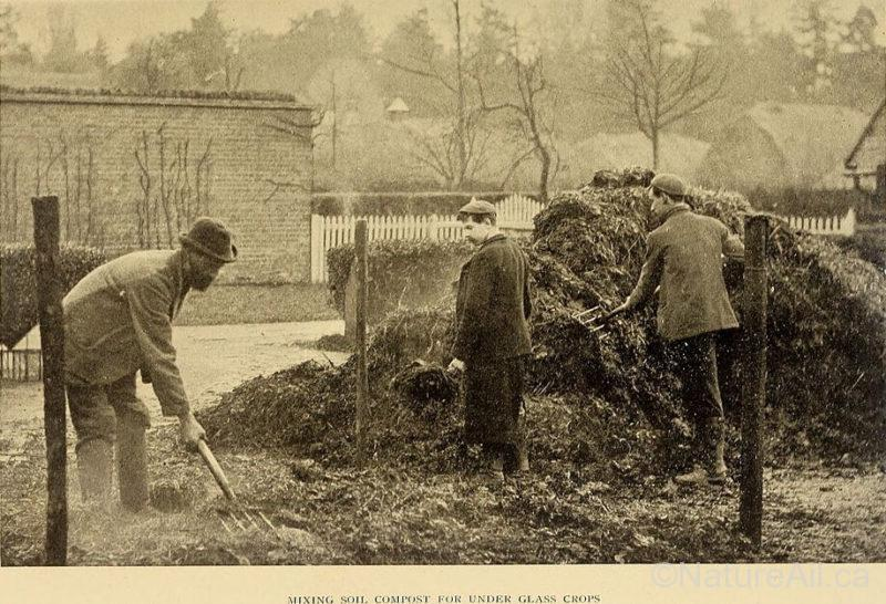 The Book of Market Gardening - R. Lewis Castle (1906)